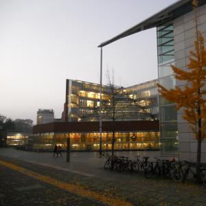 One autumn evening outside the History Faculty