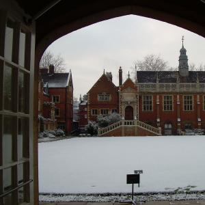Selwyn in the snow