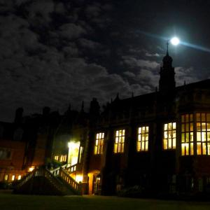 Selwyn at night